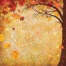 Reminisce, Designpapier, Best Of Harvest  - Magical Fall